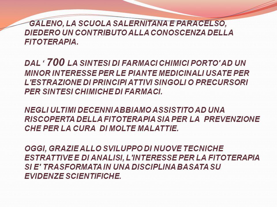 ANTICHISSIMO E L USO DEL SALICE (SALIX ALBA) DI CUI SI CONOSCONO MOLTE SPECIE.