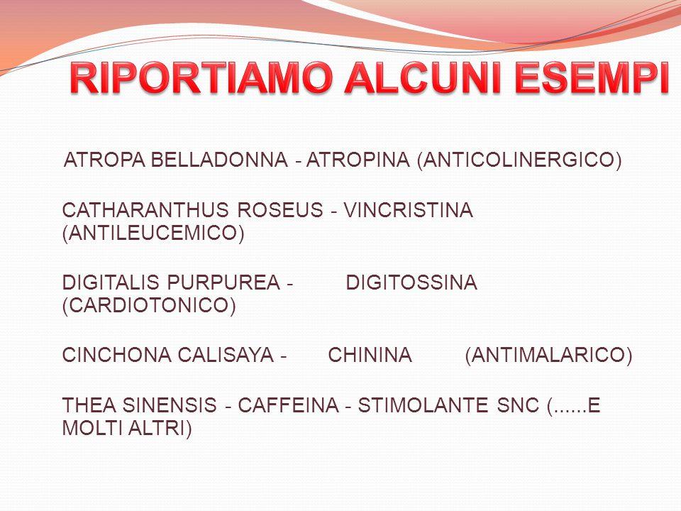 ATROPA BELLADONNA - ATROPINA (ANTICOLINERGICO) CATHARANTHUS ROSEUS - VINCRISTINA (ANTILEUCEMICO) DIGITALIS PURPUREA - DIGITOSSINA (CARDIOTONICO) CINCH