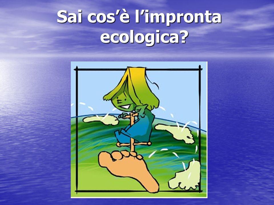 Sai cosè limpronta ecologica?