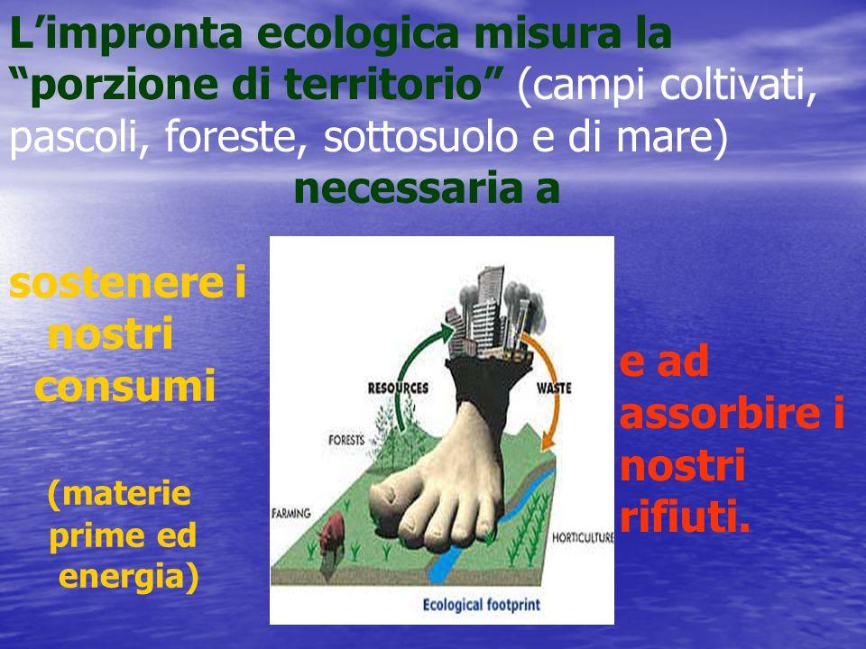 Limpronta ecologica misura la porzione di territorio (campi coltivati, pascoli, foreste, sottosuolo e di mare) necessaria a sostenere i nostri consumi (materie prime ed energia) e ad assorbire i nostri rifiuti.