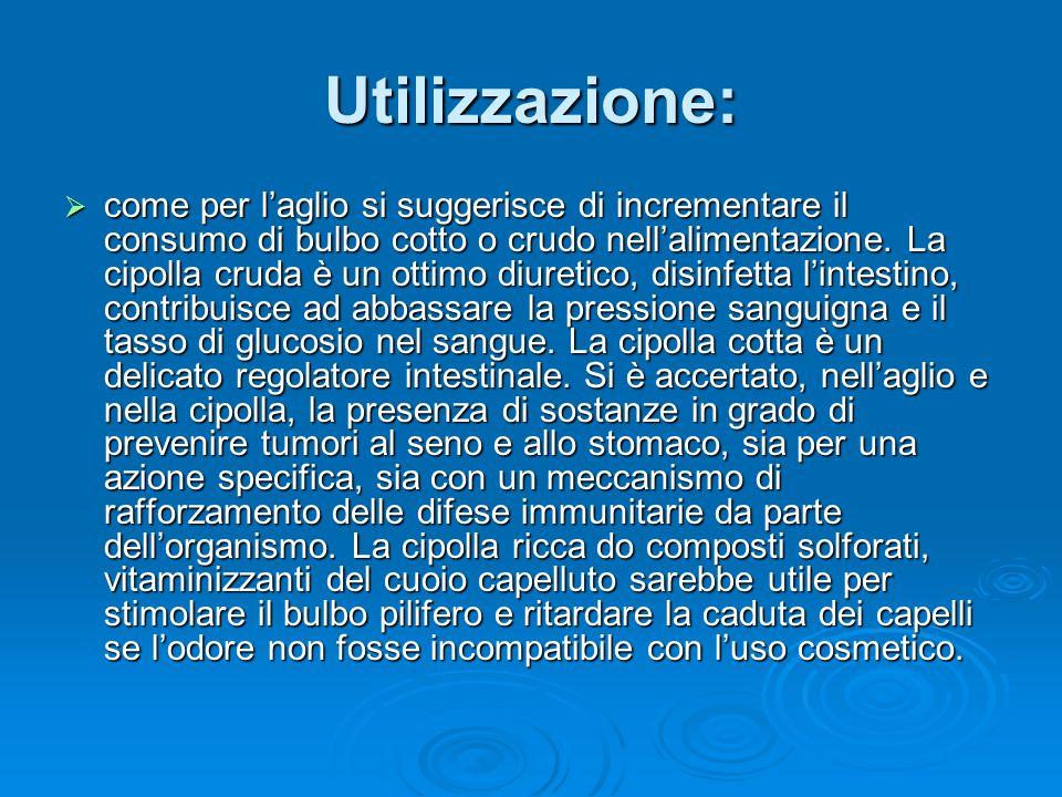 Utilizzazione: come per laglio si suggerisce di incrementare il consumo di bulbo cotto o crudo nellalimentazione.