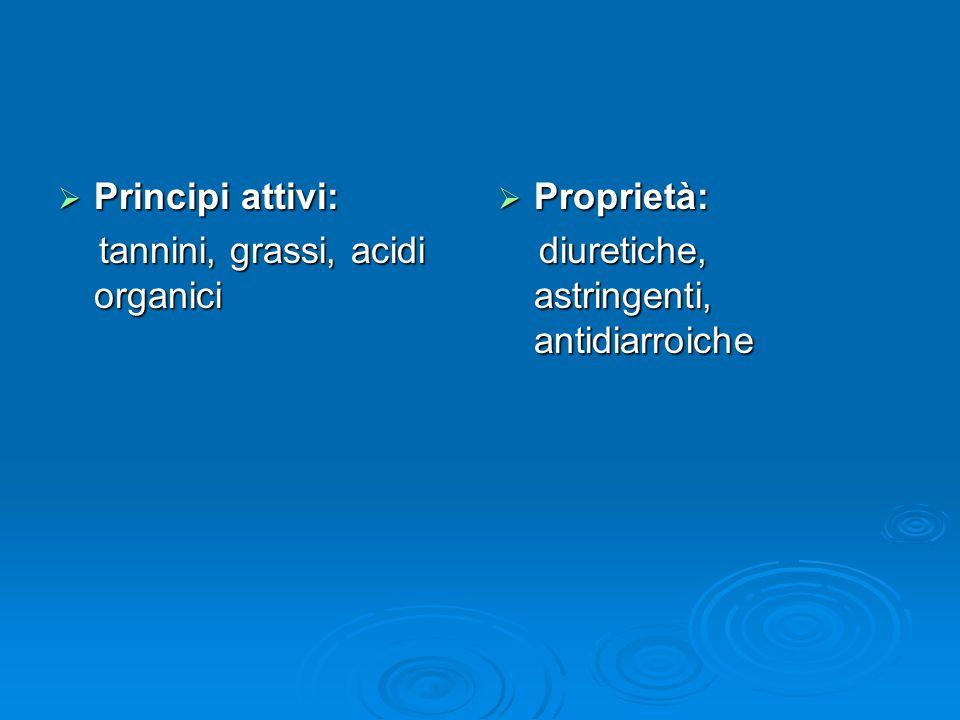 Principi attivi: Principi attivi: tannini, grassi, acidi organici tannini, grassi, acidi organici Proprietà: Proprietà: diuretiche, astringenti, antidiarroiche diuretiche, astringenti, antidiarroiche