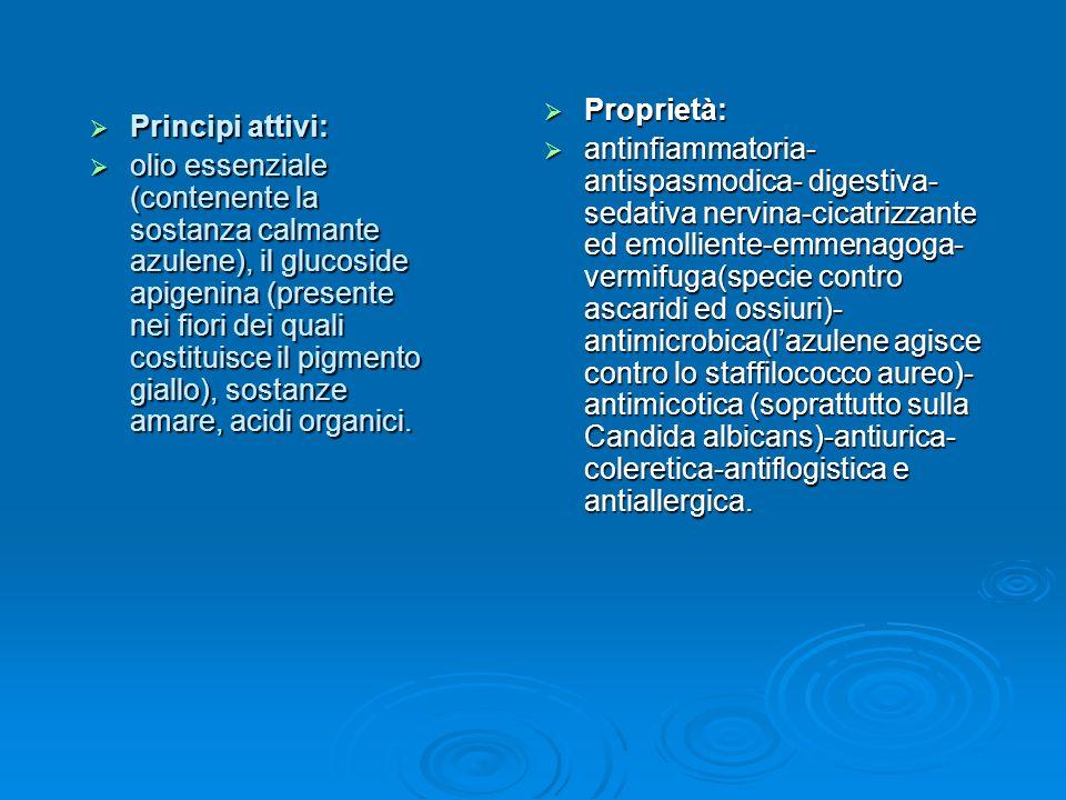 Proprietà: Proprietà: antinfiammatoria- antispasmodica- digestiva- sedativa nervina-cicatrizzante ed emolliente-emmenagoga- vermifuga(specie contro ascaridi ed ossiuri)- antimicrobica(lazulene agisce contro lo staffilococco aureo)- antimicotica (soprattutto sulla Candida albicans)-antiurica- coleretica-antiflogistica e antiallergica.