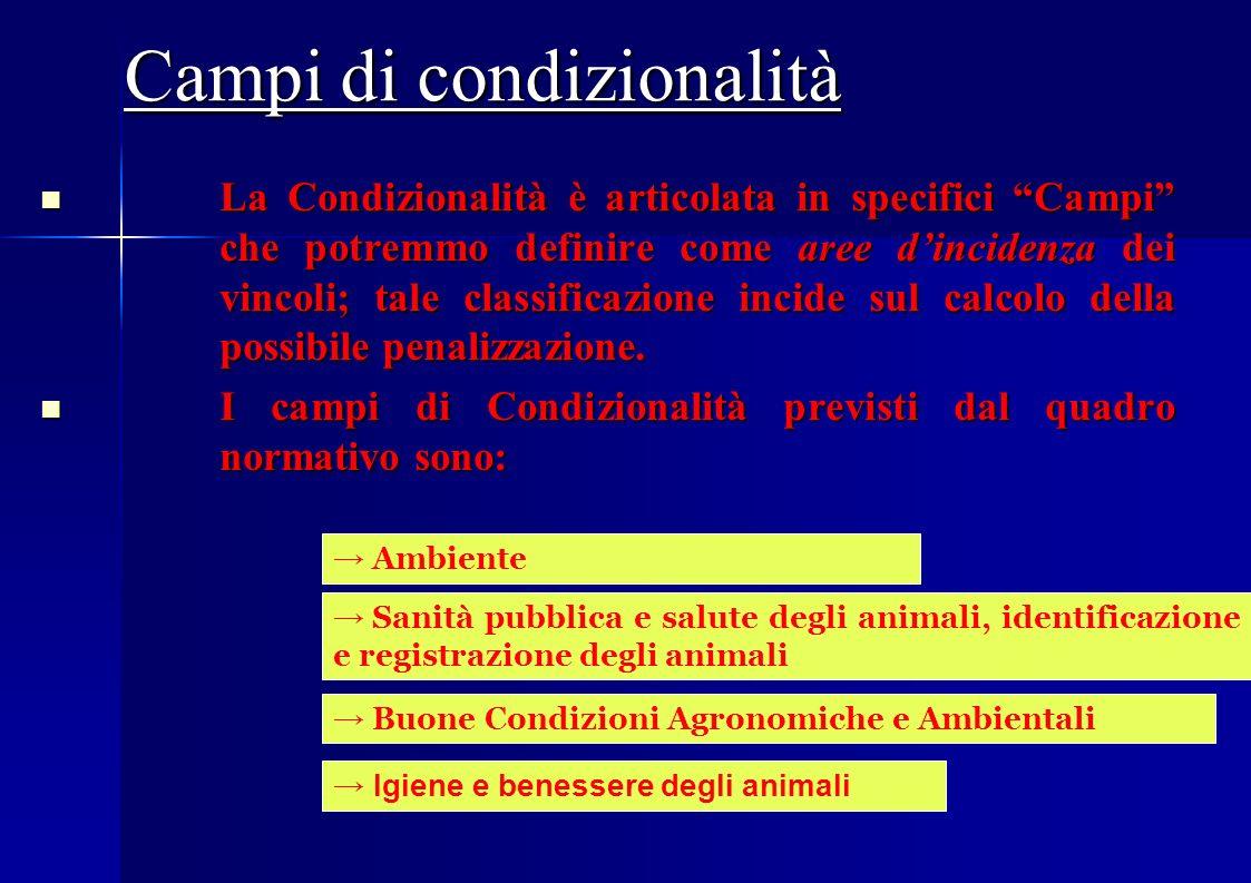 La Condizionalità CGO CRITERI GESTIONE OBBLIGATORI BCAA BUONE CONDIZIONI AGRONOMICHE E AMBIENTALI 19 ATTI7 NORME