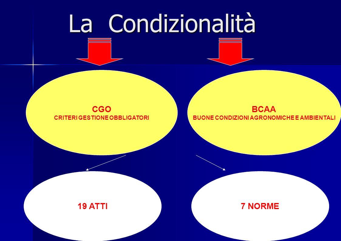 La condizionalità e lapplicazione delle norme di mantenimento dei terreni in buone condizioni agronomiche e ambientali BCAA