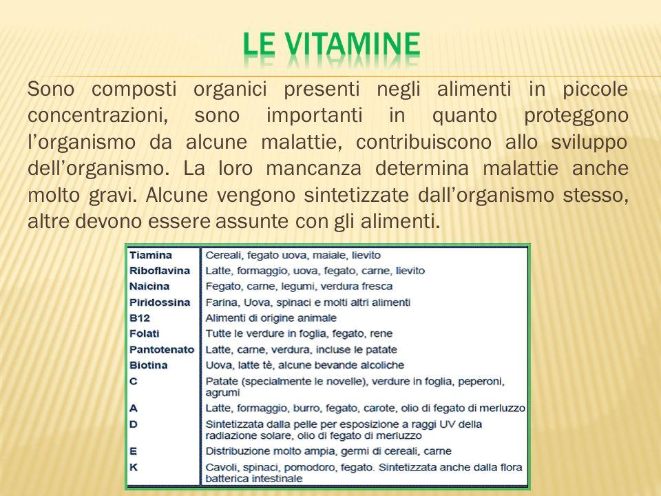 Sono composti organici presenti negli alimenti in piccole concentrazioni, sono importanti in quanto proteggono lorganismo da alcune malattie, contribu