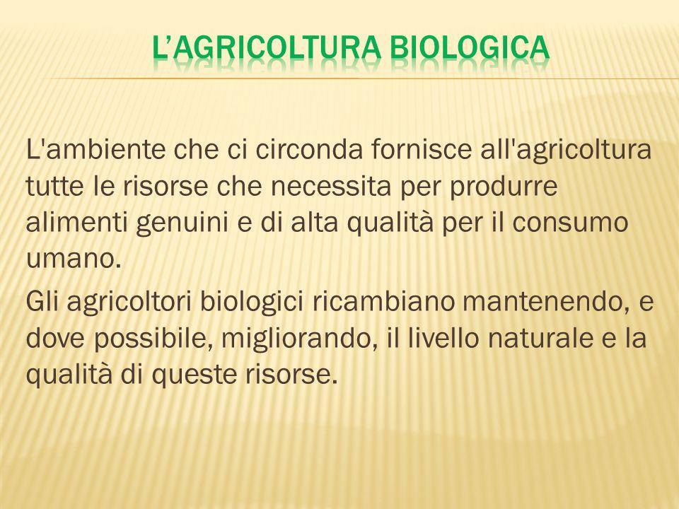 L'ambiente che ci circonda fornisce all'agricoltura tutte le risorse che necessita per produrre alimenti genuini e di alta qualità per il consumo uman