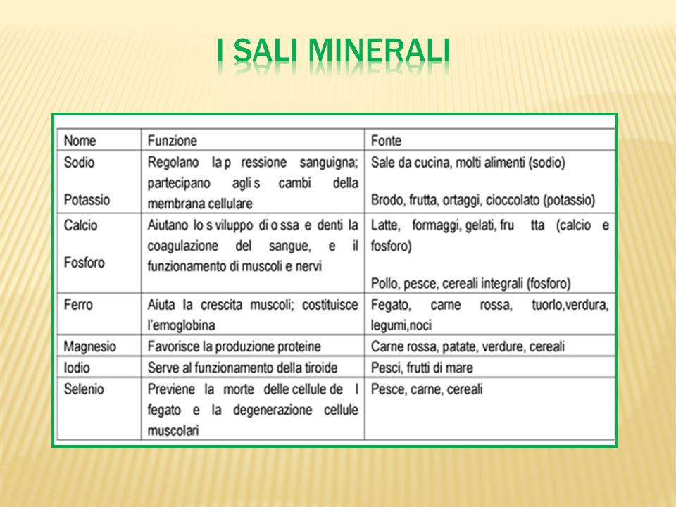 Sono composti organici presenti negli alimenti in piccole concentrazioni, sono importanti in quanto proteggono lorganismo da alcune malattie, contribuiscono allo sviluppo dellorganismo.