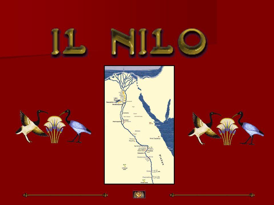 Il Nilo è uno dei fiumi più lunghi del mondo, Il Nilo è uno dei fiumi più lunghi del mondo, che scorre in direzione nord dal lago Vittoria fino al Mediterraneo dopo un percorso di 5584 km.
