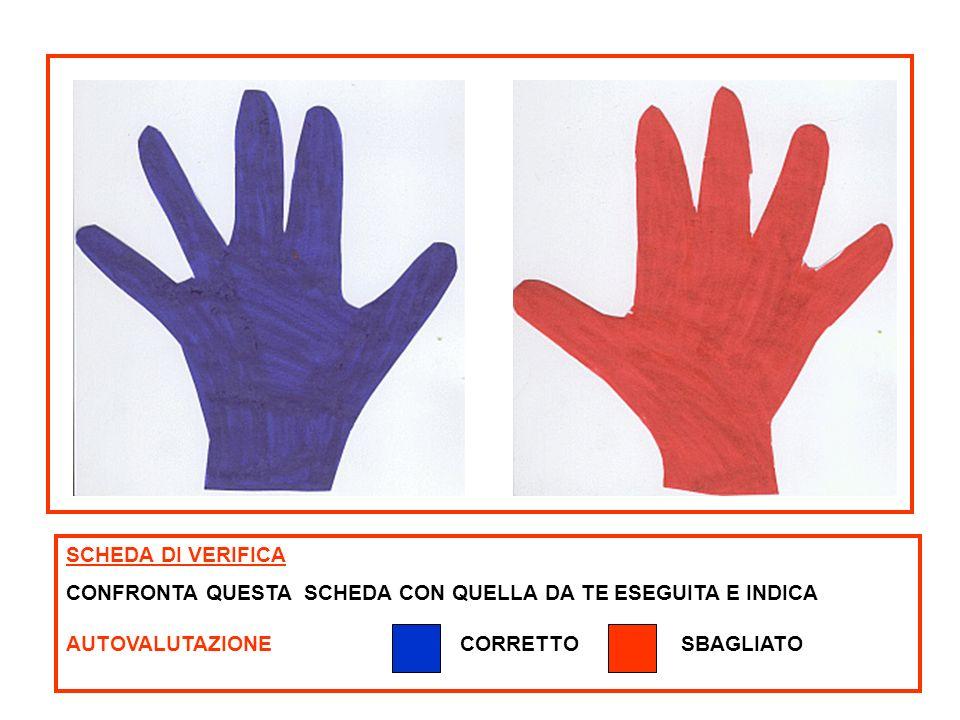 ISTRUZIONI TROVA LA STRADA CHE PORTA LA BAMBINA A CASA E COLORALA AUTO VALUTAZIONE SCHEDA N.3