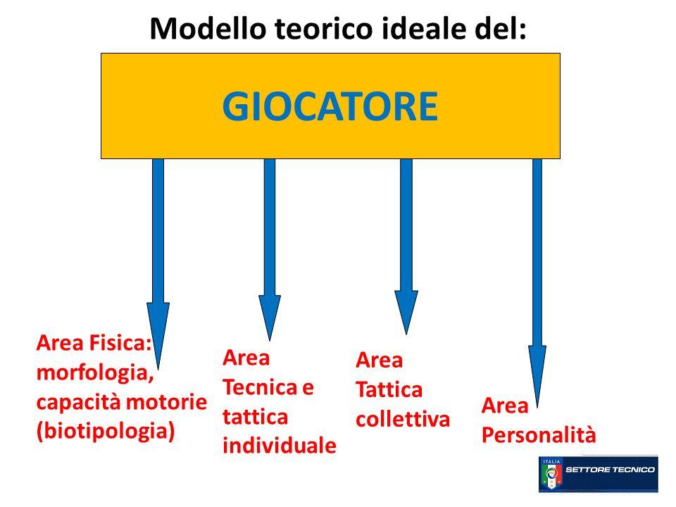 Modello teorico ideale del: GIOCATORE Area Fisica: morfologia, capacità motorie (biotipologia) Area Tecnica e tattica individuale Area Tattica collett