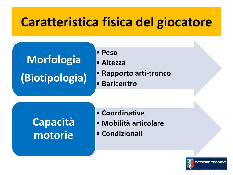 Caratteristica fisica del giocatore Peso Altezza Rapporto arti-tronco Baricentro Morfologia (Biotipologia) Coordinative Mobilità articolare Condiziona