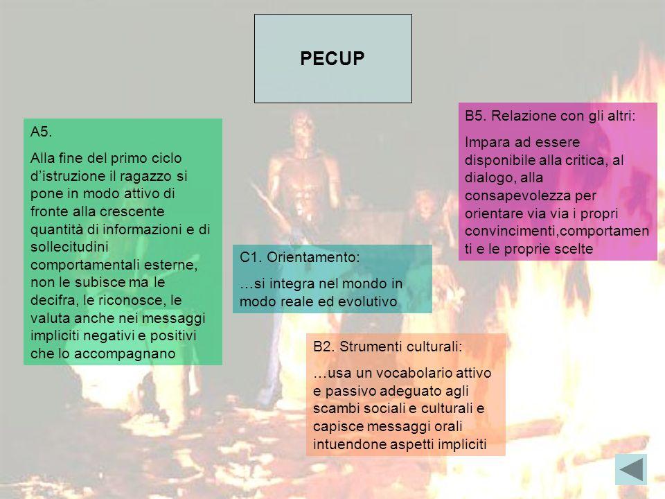 PECUP A5.