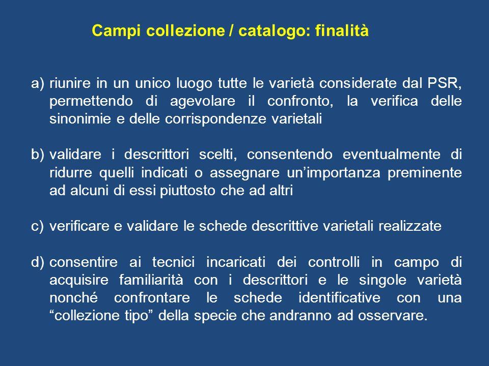 Campi collezione / catalogo: finalità a)riunire in un unico luogo tutte le varietà considerate dal PSR, permettendo di agevolare il confronto, la veri