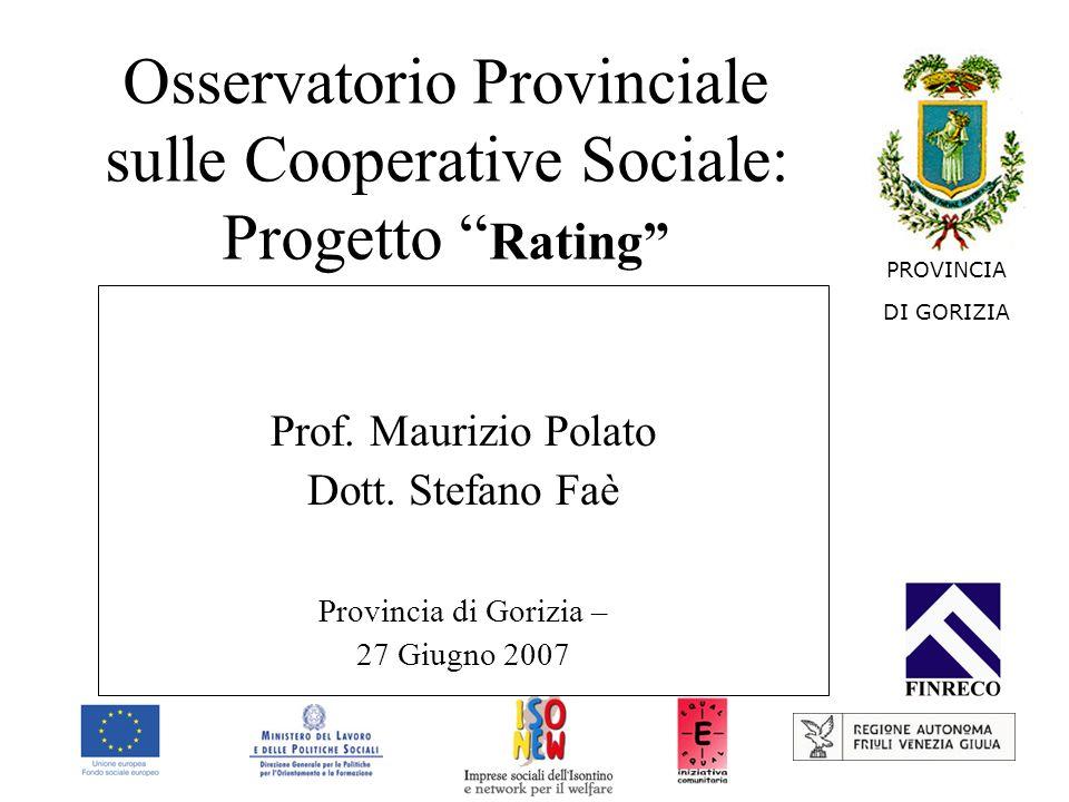 Prof. Maurizio Polato Dott. Stefano Faè Provincia di Gorizia – 27 Giugno 2007 PROVINCIA DI GORIZIA Osservatorio Provinciale sulle Cooperative Sociale: