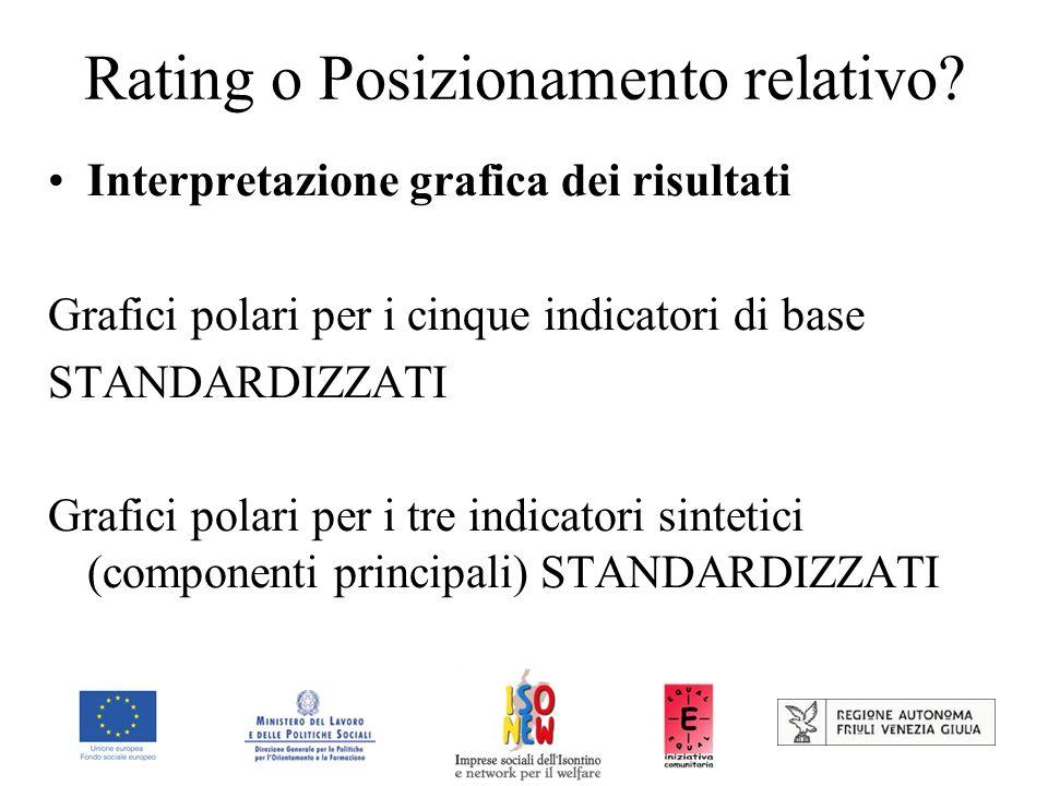 Rating o Posizionamento relativo? Interpretazione grafica dei risultati Grafici polari per i cinque indicatori di base STANDARDIZZATI Grafici polari p