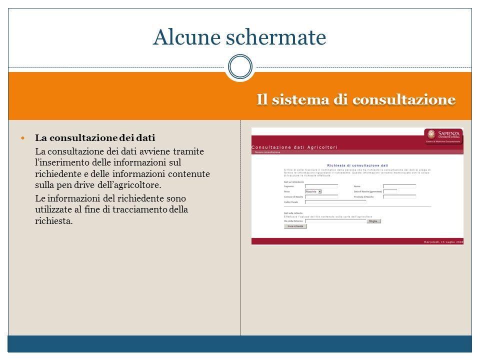 Il sistema di consultazione La consultazione dei dati La consultazione dei dati avviene tramite linserimento delle informazioni sul richiedente e dell
