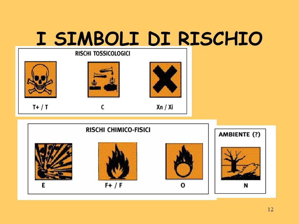 12 I SIMBOLI DI RISCHIO