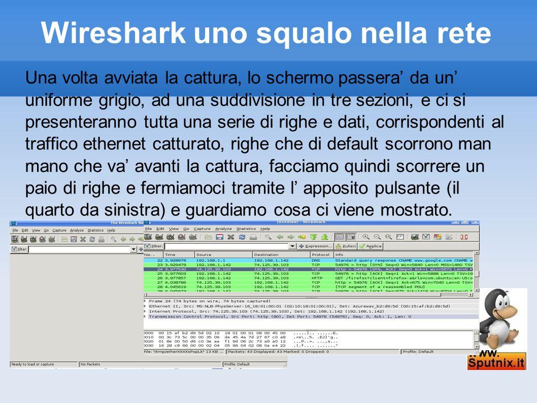 Wireshark uno squalo nella rete Una volta avviata la cattura, lo schermo passera da un uniforme grigio, ad una suddivisione in tre sezioni, e ci si pr