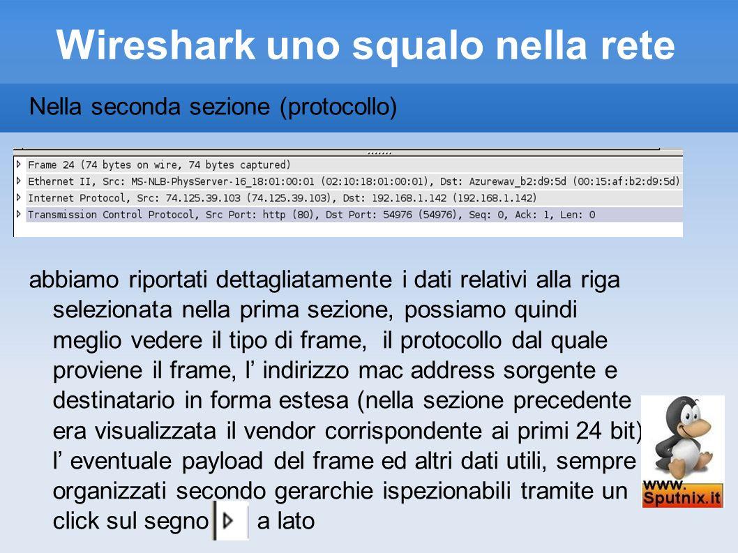 Wireshark uno squalo nella rete Nella seconda sezione (protocollo) abbiamo riportati dettagliatamente i dati relativi alla riga selezionata nella prim