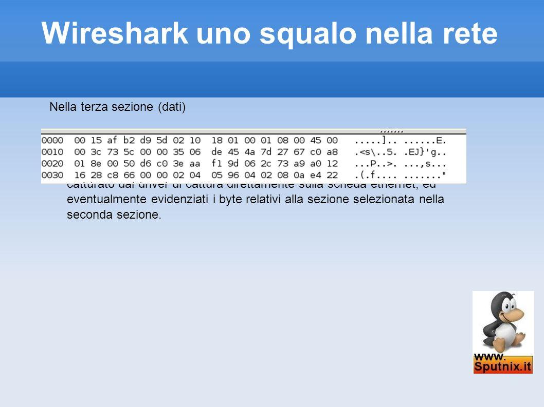 Wireshark uno squalo nella rete Nella terza sezione (dati) invece vediamo il frame nativo, in formato hex e ascii, cosi per come e catturato dal drive