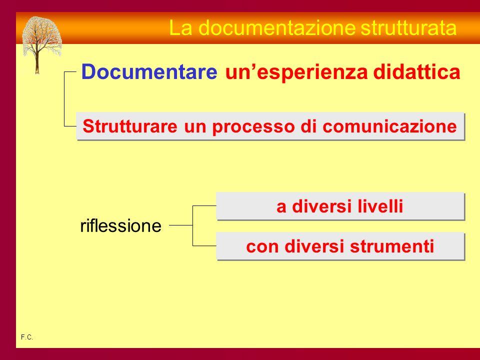 F.C. La documentazione strutturata Documentareunesperienza didattica Strutturare un processo di comunicazione a diversi livelli con diversi strumenti