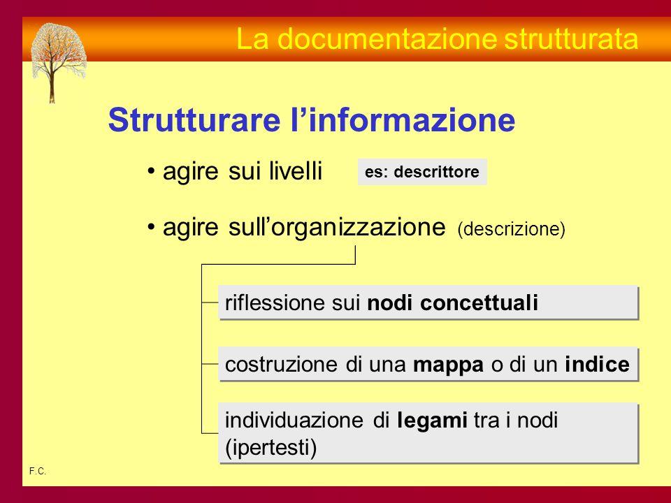 F.C. Strutturare linformazione La documentazione strutturata agire sui livelli agire sullorganizzazione (descrizione) es: descrittore riflessione sui