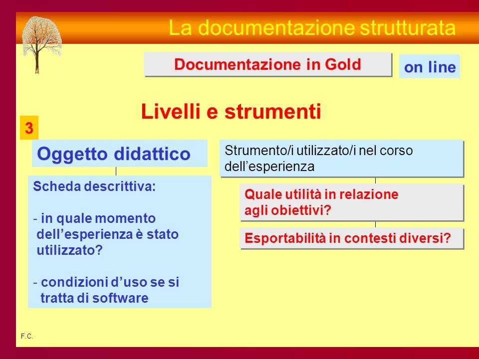 F.C. La documentazione strutturata Strumento/i utilizzato/i nel corso dellesperienza Strumento/i utilizzato/i nel corso dellesperienza Oggetto didatti