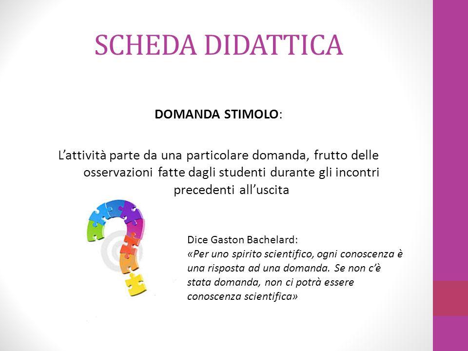 SCHEDA DIDATTICA 1.