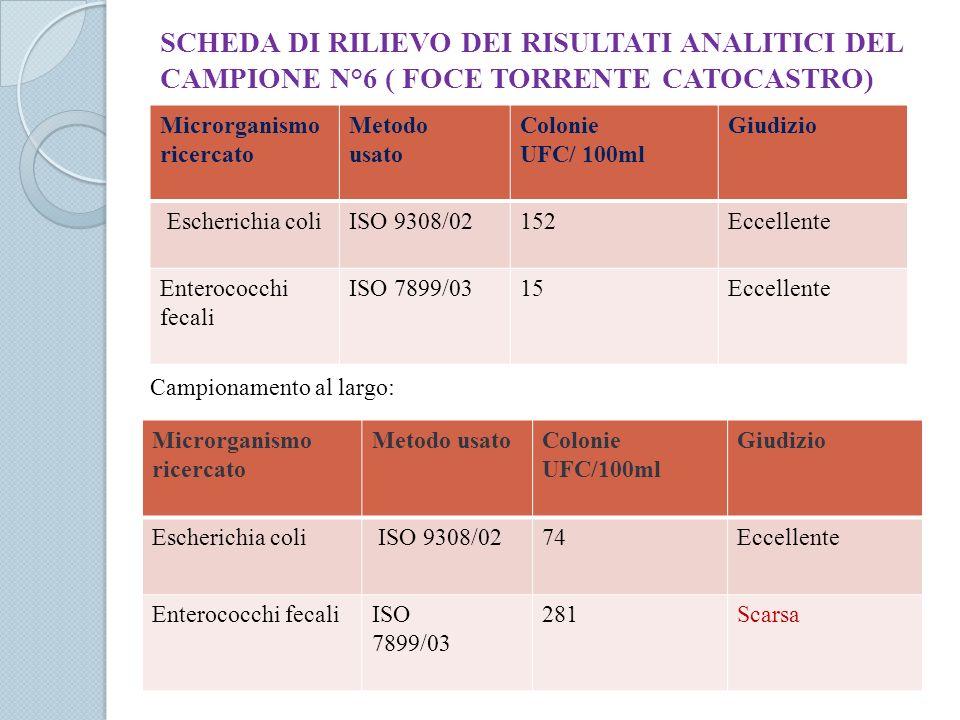 SCHEDA DI RILIEVO DEI RISULTATI ANALITICI DEL CAMPIONE N°6 ( FOCE TORRENTE CATOCASTRO) Microrganismo ricercato Metodo usato Colonie UFC/ 100ml Giudizi
