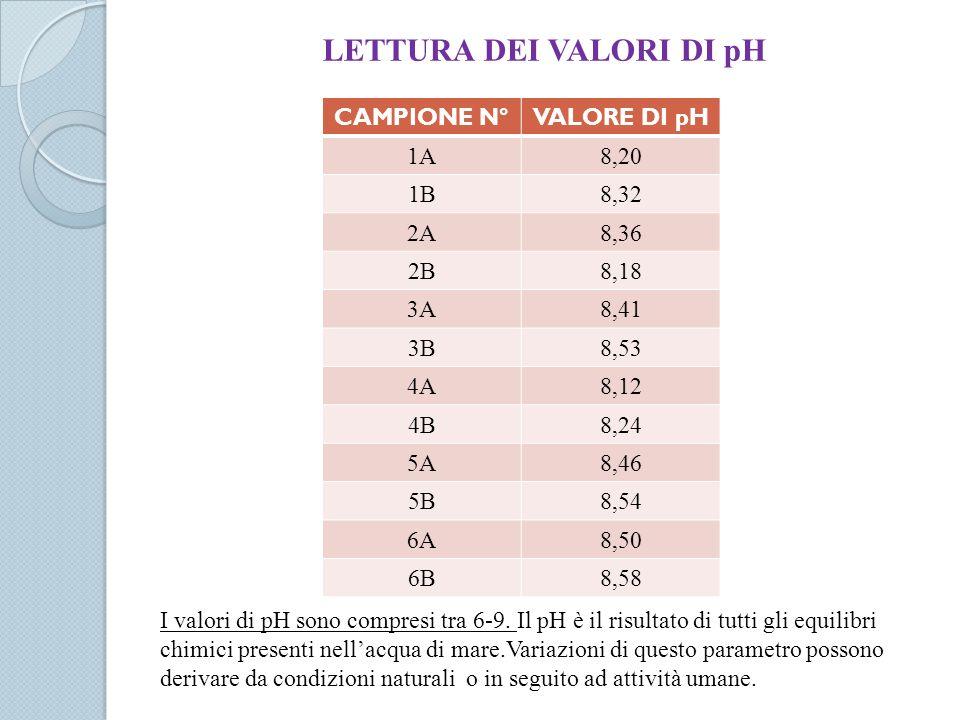 LETTURA DEI VALORI DI pH CAMPIONE N°VALORE DI pH 1A8,20 1B8,32 2A8,36 2B8,18 3A8,41 3B8,53 4A8,12 4B8,24 5A8,46 5B8,54 6A8,50 6B8,58 I valori di pH so