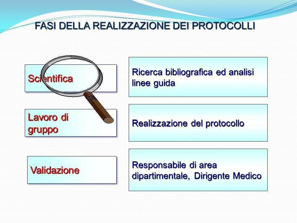 ScientificaScientifica Ricerca bibliografica ed analisi linee guida Realizzazione del protocollo Responsabile di area dipartimentale, Dirigente Medico