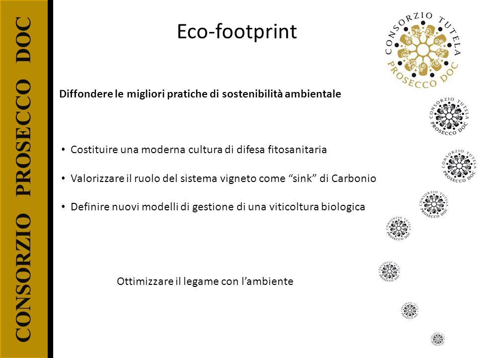 CONSORZIO PROSECCO DOC Eco-footprint Costituire una moderna cultura di difesa fitosanitaria Valorizzare il ruolo del sistema vigneto come sink di Carb