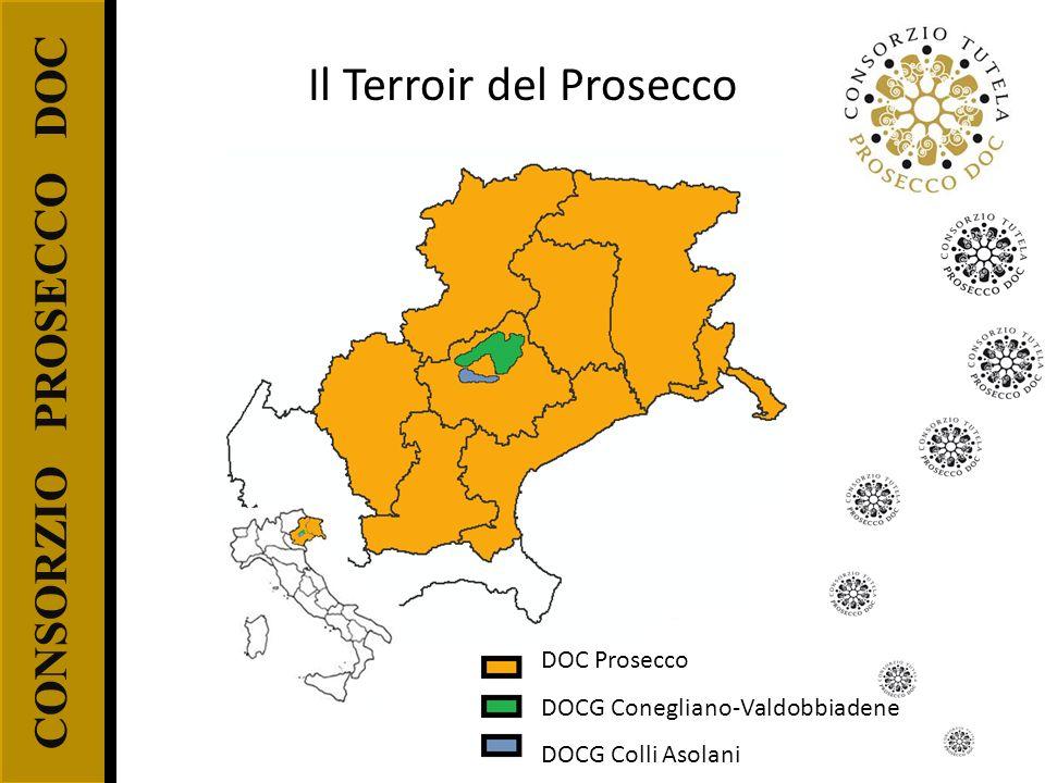 CONSORZIO PROSECCO DOC DOC Prosecco DOCG Conegliano-Valdobbiadene DOCG Colli Asolani Il Terroir del Prosecco