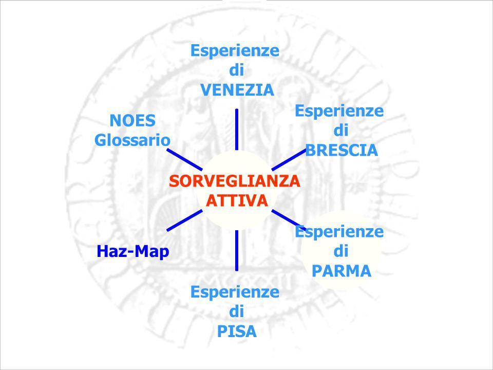 SORVEGLIANZA ATTIVA Esperienze di VENEZIA Esperienze di BRESCIA Esperienze di PARMA Esperienze di PISA Haz-Map NOES Glossario