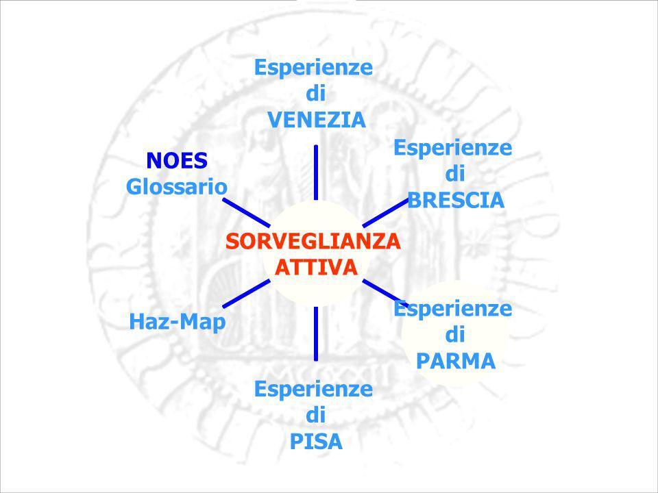 SORVEGLIANZA ATTIVA Esperienze di VENEZIA Esperienze di BRESCIA Esperienze di PARMA Esperienze di PISA Haz-MapNOES Glossario