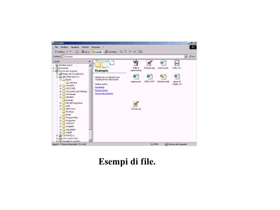 Esempi di file.