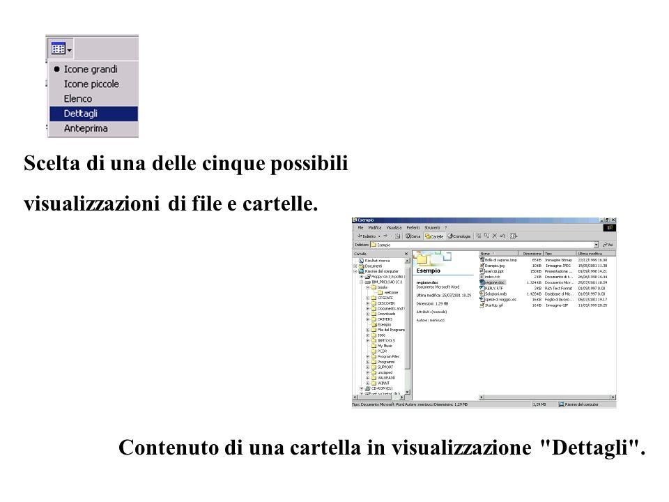 Scelta di una delle cinque possibili visualizzazioni di file e cartelle. Contenuto di una cartella in visualizzazione