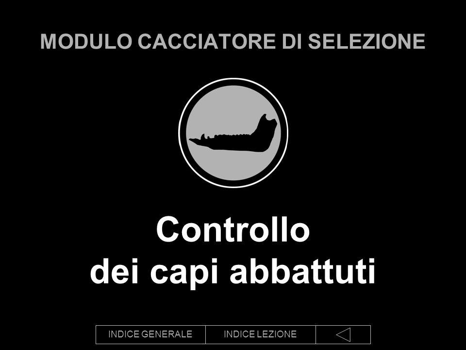 INDICE GENERALEINDICE LEZIONE Schede in uso in Provincia di Modena: capriolo 1,2, …15 987654 ….