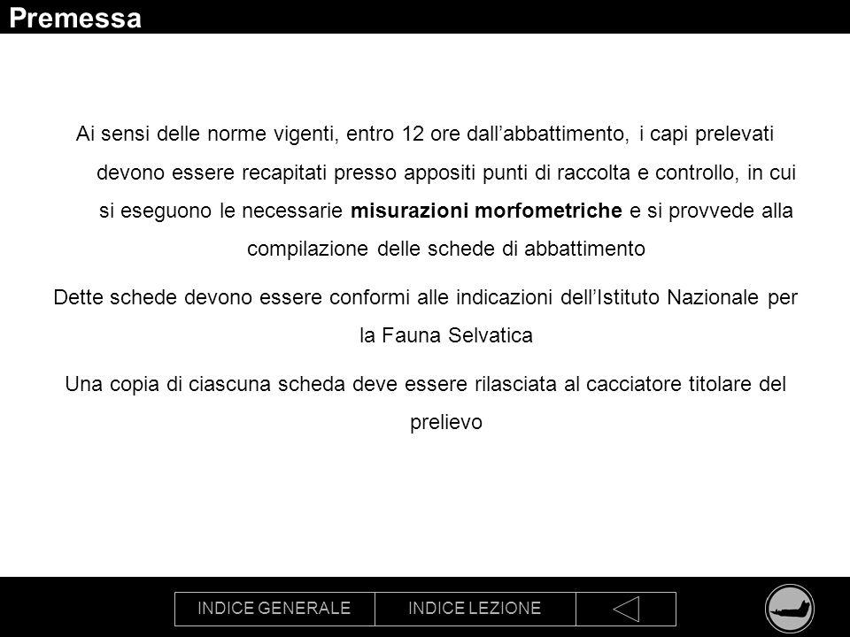 INDICE GENERALEINDICE LEZIONE Schede in uso in Provincia di Modena: daino