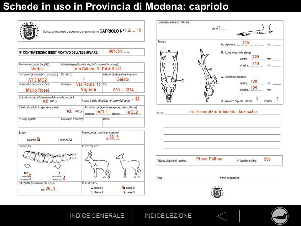 INDICE GENERALEINDICE LEZIONE Schede in uso in Provincia di Modena: capriolo 1,2, …15 987654 …. VericaVia Gaiato, 2, PAVULLO ATC MO2 C Gaiato Mario Ro