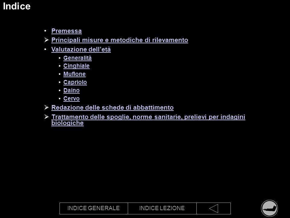 INDICE GENERALEINDICE LEZIONE Indice Premessa Principali misure e metodiche di rilevamento Valutazione delletà Generalità Cinghiale Muflone Capriolo D