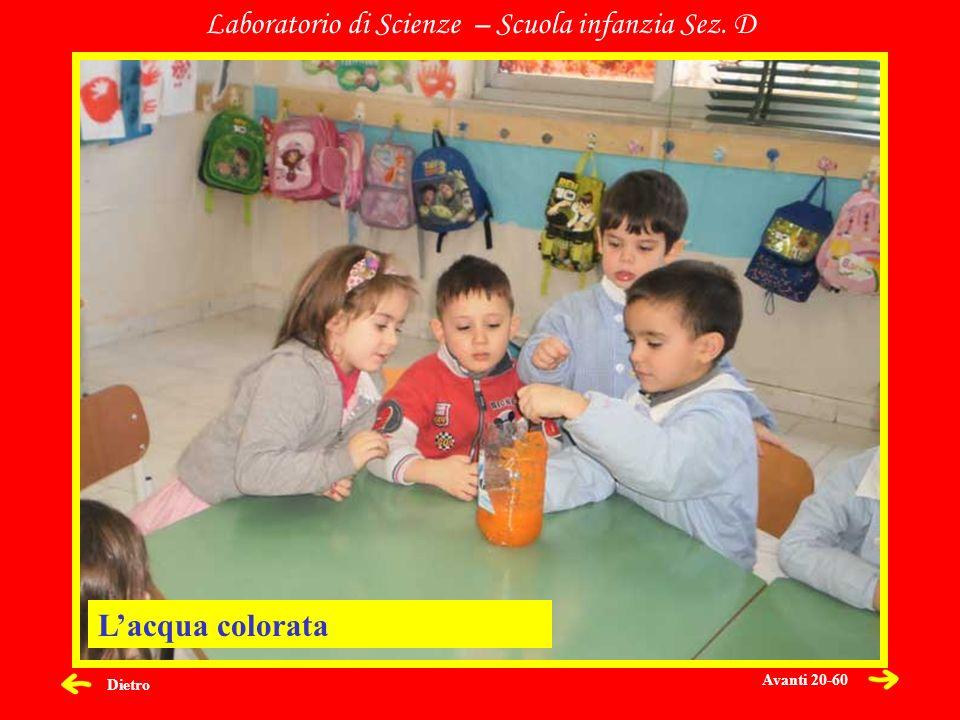 Dietro Laboratorio di Scienze – Scuola infanzia Sez. D Lacqua colorata Avanti 20-60