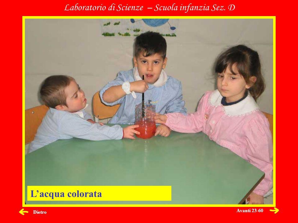 Dietro Laboratorio di Scienze – Scuola infanzia Sez. D Lacqua colorata Avanti 23-60