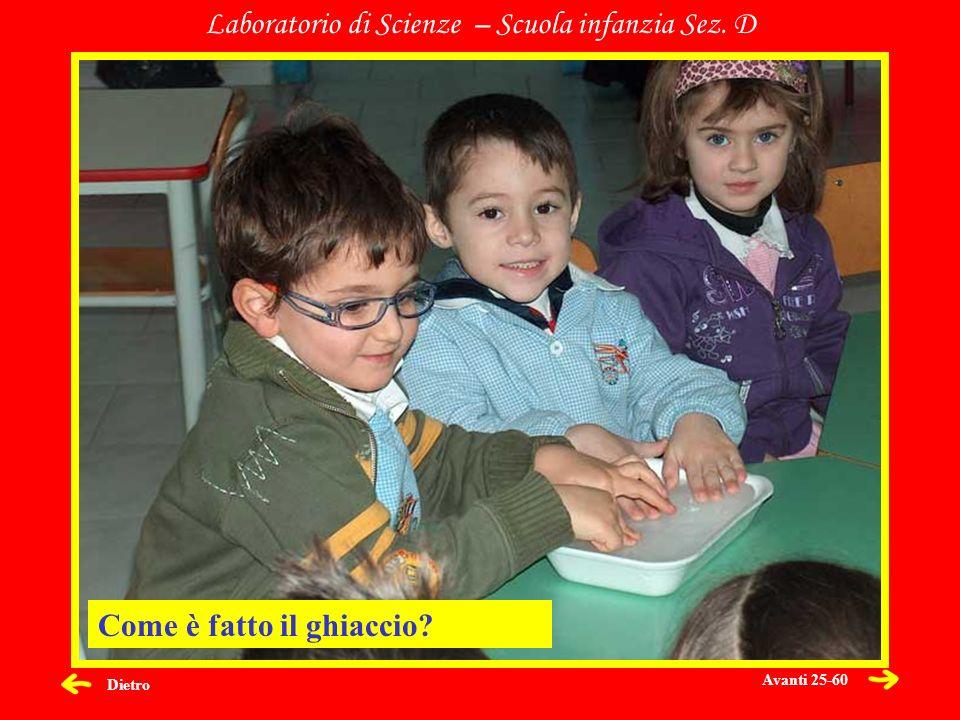 Dietro Laboratorio di Scienze – Scuola infanzia Sez. D Come è fatto il ghiaccio? Avanti 25-60