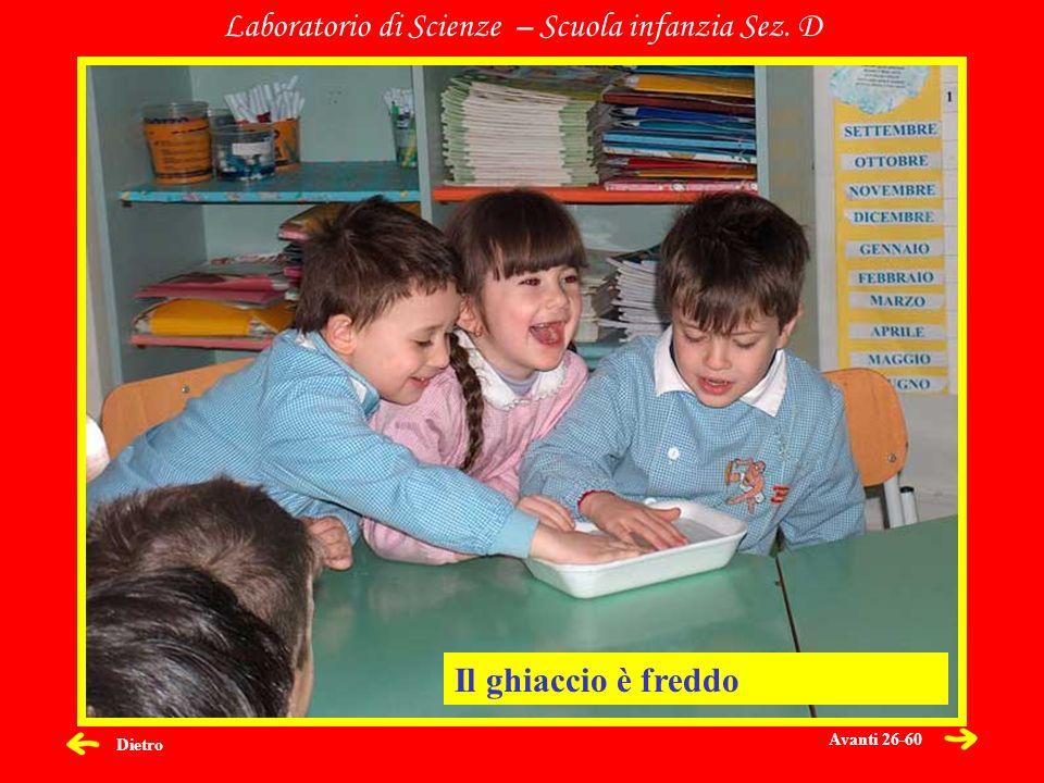 Dietro Laboratorio di Scienze – Scuola infanzia Sez. D Il ghiaccio è freddo Avanti 26-60
