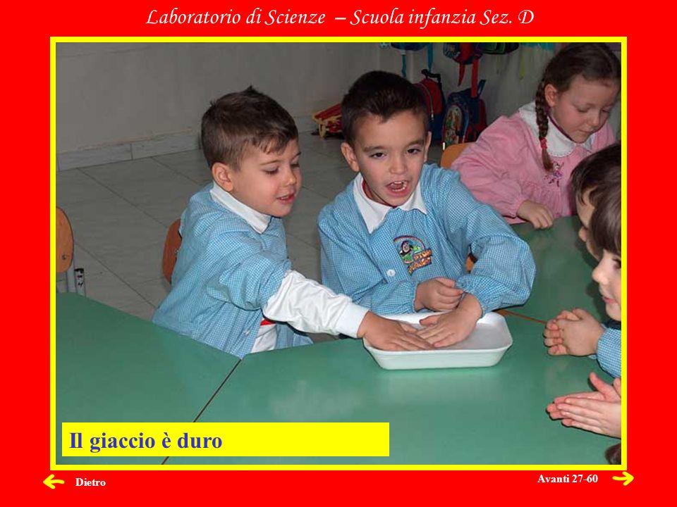 Dietro Laboratorio di Scienze – Scuola infanzia Sez. D Il giaccio è duro Avanti 27-60