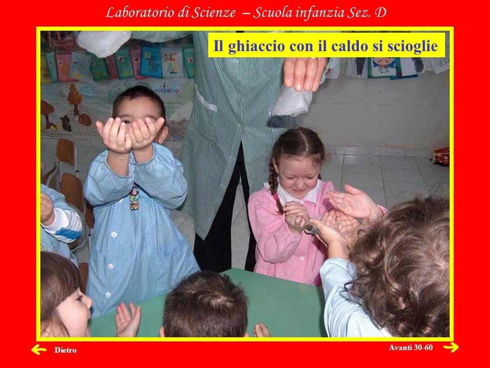 Dietro Laboratorio di Scienze – Scuola infanzia Sez. D Il ghiaccio con il caldo si scioglie Avanti 30-60
