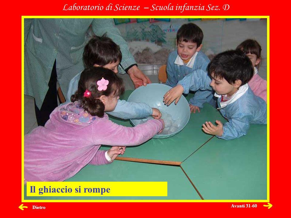 Dietro Laboratorio di Scienze – Scuola infanzia Sez. D Il ghiaccio si rompe Avanti 31-60