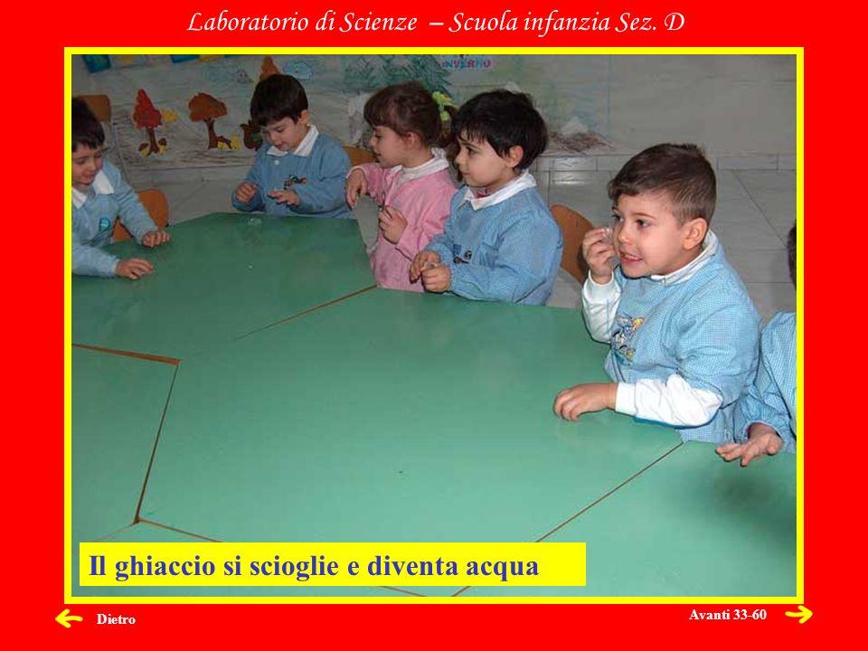 Dietro Laboratorio di Scienze – Scuola infanzia Sez. D Il ghiaccio si scioglie e diventa acqua Avanti 33-60